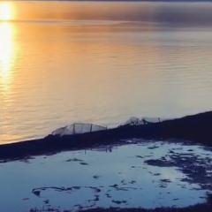 賽里木湖用戶圖片