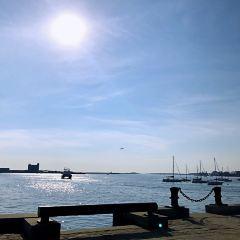 波士頓海灣用戶圖片