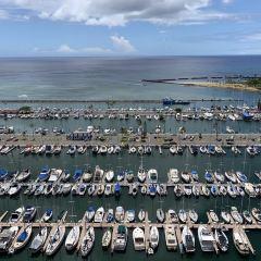 阿拉威遊艇港用戶圖片