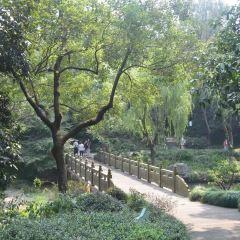 소년아동공원 여행 사진