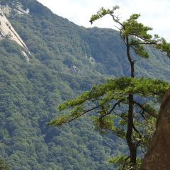 Tianhe Grand Canyon (Inverted Ditch) scenic spot User Photo