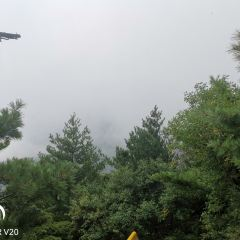 朱雀國家森林公園用戶圖片