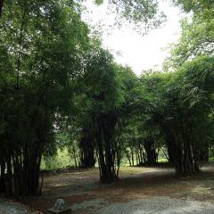 Mabaren Ruins User Photo