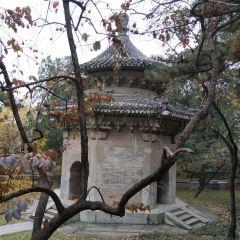 향산 공원 여행 사진