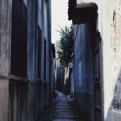 同里古鎮用戶圖片