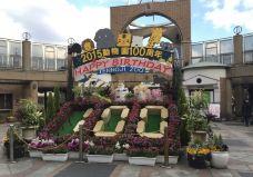 天王寺动物园-大阪-小凌60