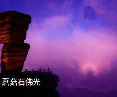 紅雲金頂用戶圖片