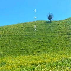 那拉提旅遊風景區用戶圖片