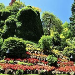 The Butchart Gardens User Photo