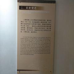 小雁塔(薦福寺)用戶圖片