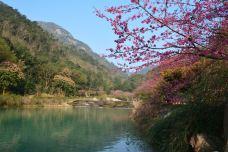 福州国家森林公园-福州-牛奶海