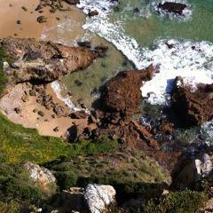 猶他海灘用戶圖片