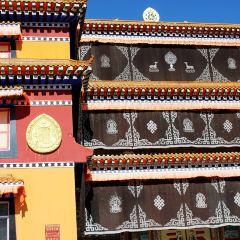 禪定寺用戶圖片