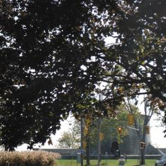 Artillery Park User Photo