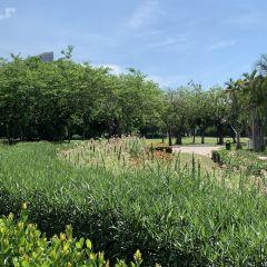 萬綠園用戶圖片