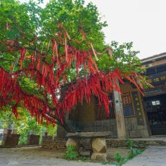 Yayougou Scenic Spot User Photo