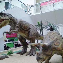 Tianjin Natural History Museum User Photo