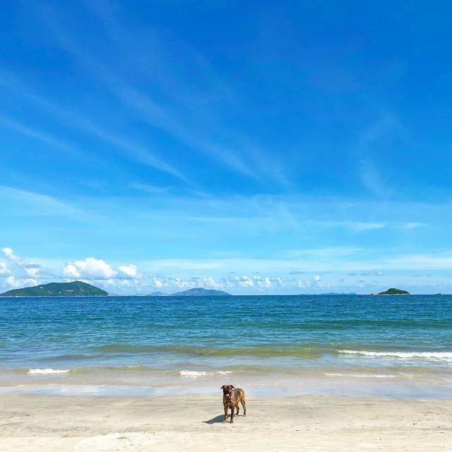 【香港沙灘2020】8個乾淨沙幼+看日落打卡的少人沙灘推介