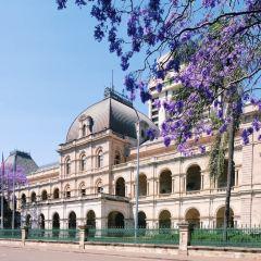 Queensland Parliament User Photo