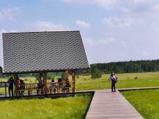 公主湖自然湿地公园-馆陶-汤告老师