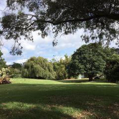 Western Springs Lakeside Park User Photo