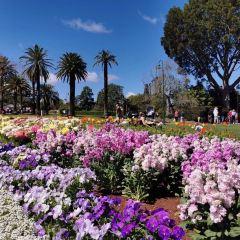 South Bank Parklands User Photo