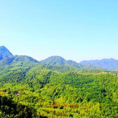 Maiji Mountain Scenic Area User Photo