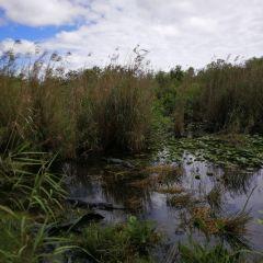 Everglades National Park User Photo
