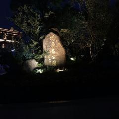 明月島公園用戶圖片