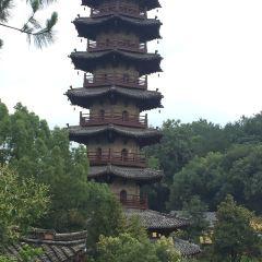 연경사탑 여행 사진