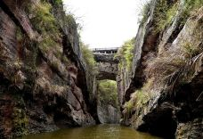 天生桥-神农架-M27****795