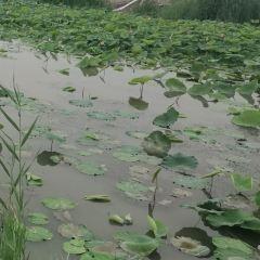 Mata Lake User Photo