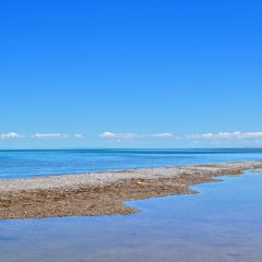 Qinghai Lake User Photo