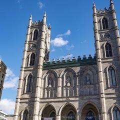 蒙特利爾聖母大教堂用戶圖片