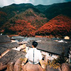 Shishecun User Photo