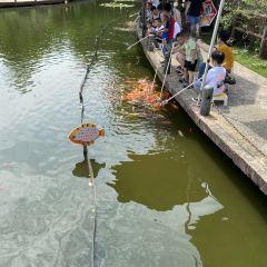 Wuxi Zoo,Taihu Lake Amusement Park User Photo
