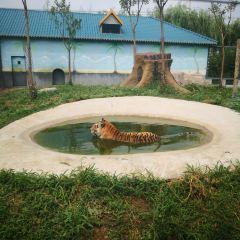 Longkou Zoo and Botanical Garden User Photo
