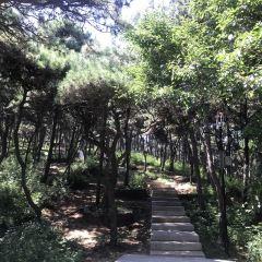 롄펑산(연봉산) 여행 사진