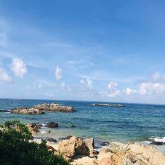 따이따이섬 여행 사진