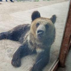 龍沙動植物園用戶圖片