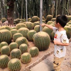 天宮莊園用戶圖片