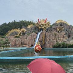 Ginkgo Lake Park User Photo