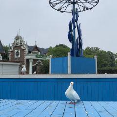 Pigeon Nest Park User Photo