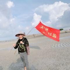 Hongshulin Tiantianganhai User Photo