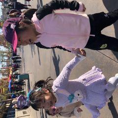 디즈니 캘리포니아 어드밴츄어 파크 여행 사진