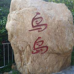 선양냐오다오(심양조도) 여행 사진