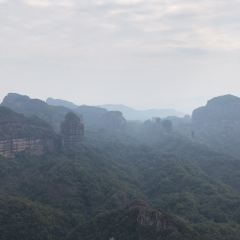 Maozi Peak Forest Farm User Photo