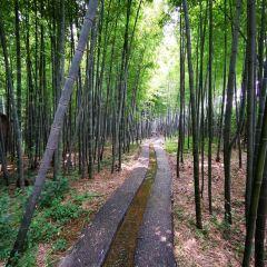 Zhudongtian Scenic Area User Photo