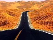 新疆和田+喀什7日6晚半自助游·行走南疆,2人起天天发团,穿越塔克拉玛干沙漠公路,走近刀郎文化之乡,漫步喀什古城