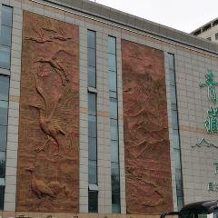 青藏高原自然博物館用戶圖片
